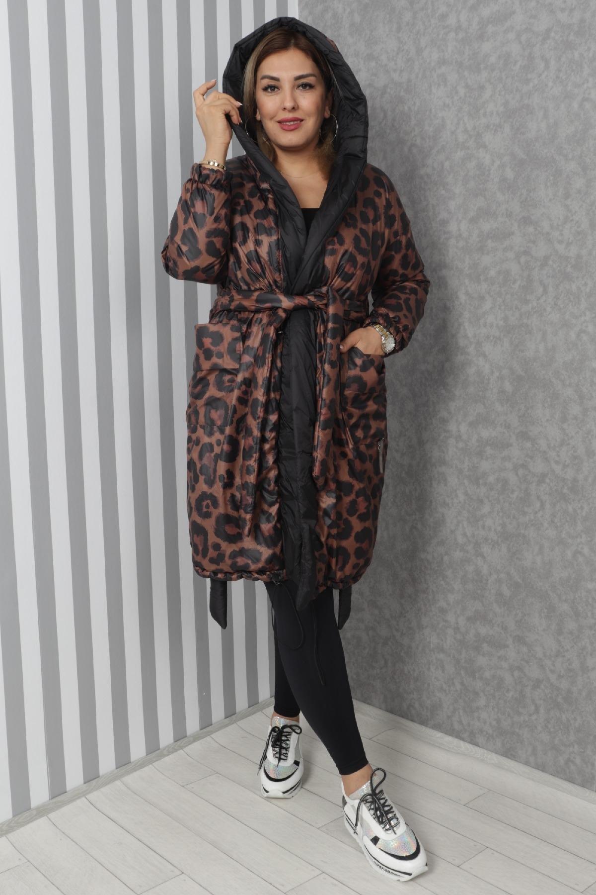 Coats-Brown